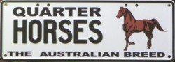 Aussie Horses