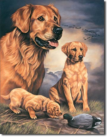 US Tin Sign - GOLDEN LABS & DUCK